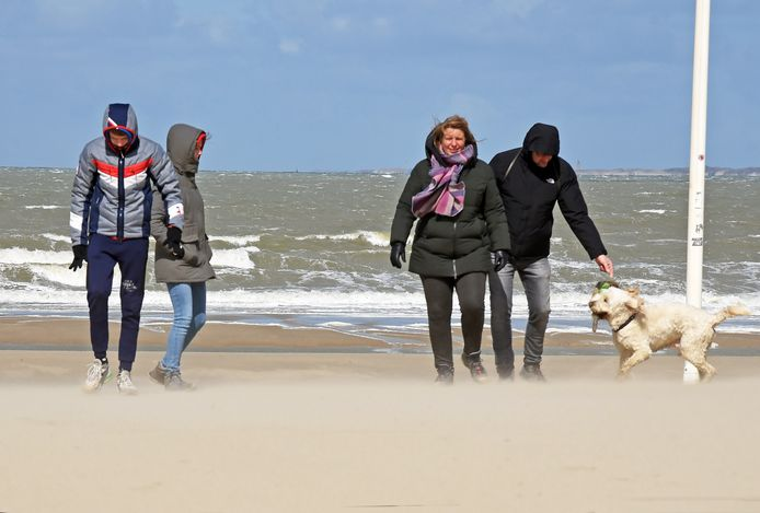 Zandhappen voor de familie Van Kuijk en hun hond Beer aan het strand van Cadzand.