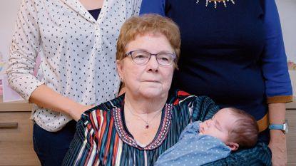 Nina zorgt voor viergeslacht in Assenede en Evergem