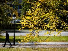 Goed nieuws voor Sint: geen winters weer, maar zacht en zonnig