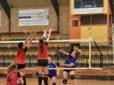 Volleybalsters Ardito winnen derby, Bok koestert de twee punten