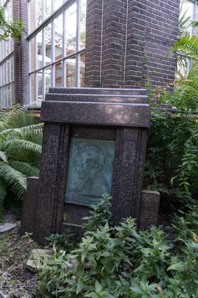 Vorige week waren we in de Hortus en zochten we de plaquette voor bioloog en botanicus Hugo de Vries (1848-1935), die voor de monumentale palmenkas staat. Onder leiding van De Vries werd de Hortus fors uitgebreid met een laboratorium en de palmenkas. Winnaar van het jaarabonnement op Ons Amsterdam is mevrouw S. de Rijk uit Amsterdam.  Beeld Birgit Bijl