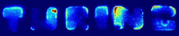 Een groep bacteriën vormt de lettercombinatie Turing, naar de Britse wiskundige Alan Turing. Beeld
