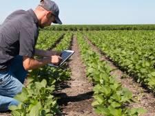 Brabantse landbouw in 2030 en 2040? Duurzaam en toonaangevend, zegt de provincie