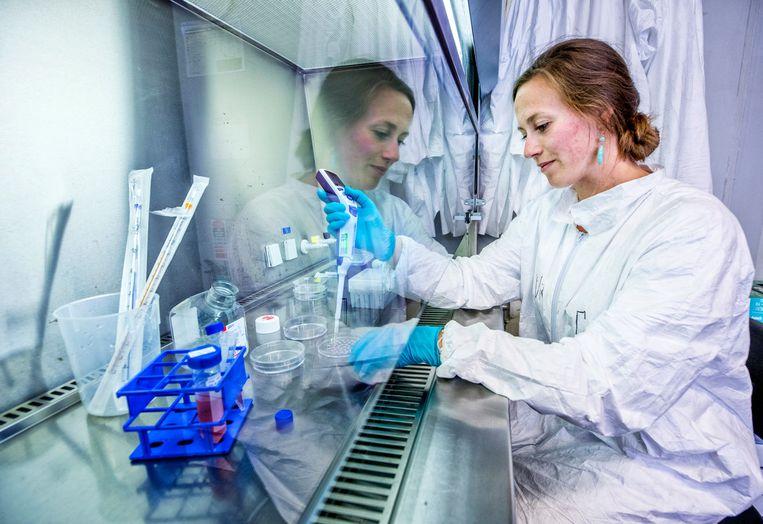 Victoria de Leeuw aan het werk in het laboratorium bij het RIVM te Bilthoven. Beeld Raymond Rutting