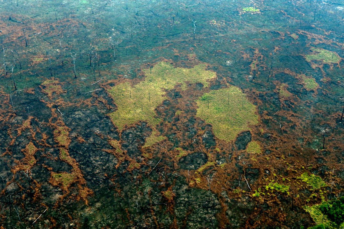 Een luchtfoto van het Amazone-regenwoud in Brazilië.