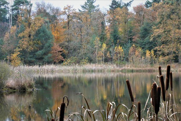 Hoe gaat de Meierij haar landschap tentoonstellen tijdens de Landschapstriënnale 2020?