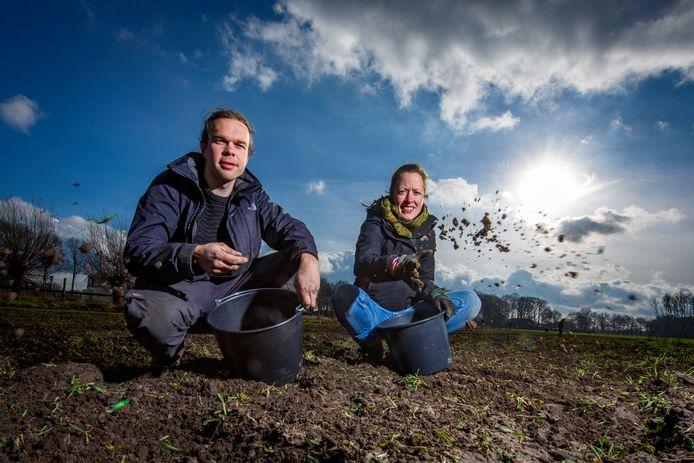Joanne Malotaux en Johannes Regelink zaaiden zaterdag de kruiden op het land bij burgerboerderij De Patrijs. Ook kruidenthee behoort straks tot het assortiment van de boerderij.