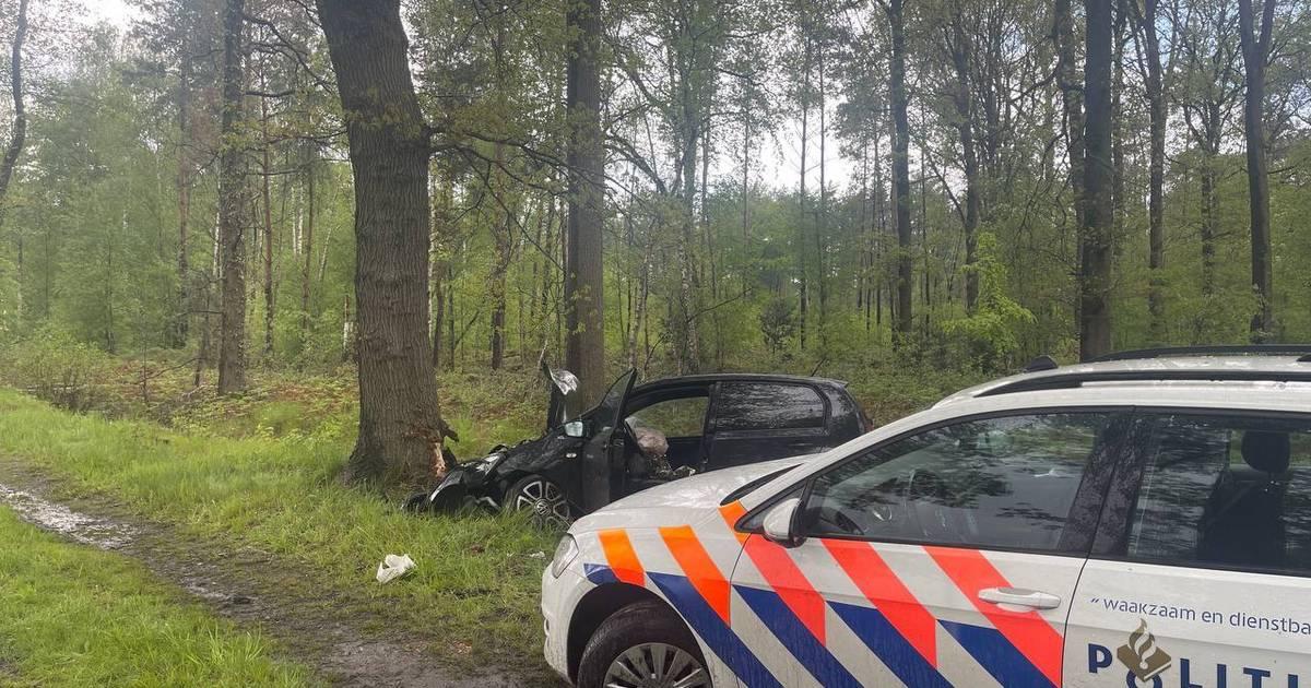 Bestuurder gewond na frontale botsing tegen boom in Winterswijk.