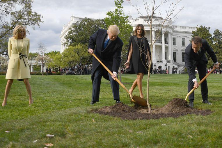 De Franse president Macron gaf in 2018 een boom cadeau, die Trump samen met hem plantte in de tuin van het Witte Huis. Beeld AFP