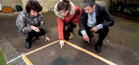 Une météorite plus vieille que la Terre atterrit dans l'allée d'une famille