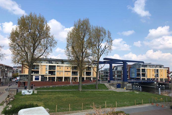 Het grasveldje bij de Swaenswijkbrug waar volgens het Alphense college best zeven woningen kunnen worden gebouwd.