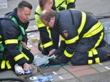 Brandweermannen ontfermen zich over katje bij woningbrand in Breda