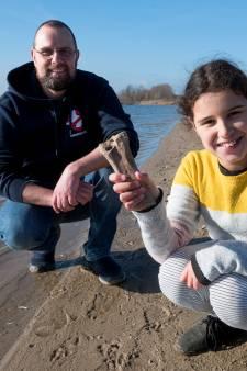 Rob stuit na zwemrondje plots op de resten van 30.000 jaar oud beest: 'We maakten elkaar helemaal gek'