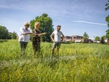 Van 'tiny forest' naar kruidenwadi: gemeente staat stil bij opmars van het groen in Hengelo