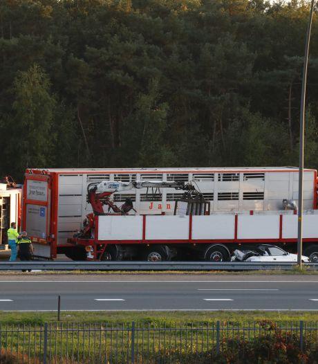Overleden automobilist bij ongeluk op A2 is 50-jarige man uit Helmond, vrachtwagenchauffeur aangehouden