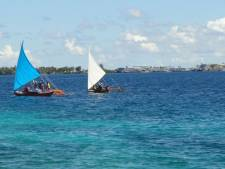 Les états insulaires s'inquiètent de la montée des eaux