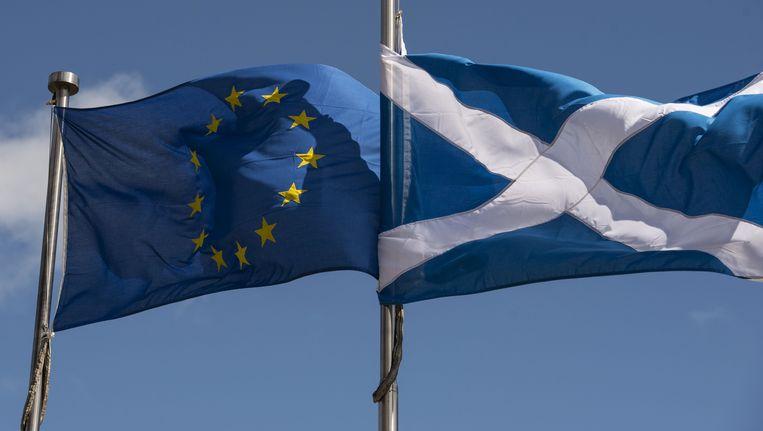 De Europese vlag en de Schotse vlag, broederlijk naast elkaar. Beeld AFP