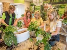 De Meidoorn is de eerste Zeeuwse school met een binnenbos
