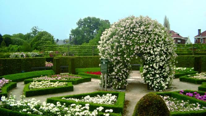 Van rozengeur naar decadentie in het Pajottenland