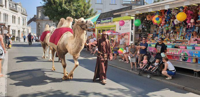 Twee kamelen trokken de ecologische reclamestoet op gang.