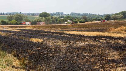 Brandgevaar door aanhoudende droogte: voortaan rookverbod in Oost-Vlaamse provinciale domeinen