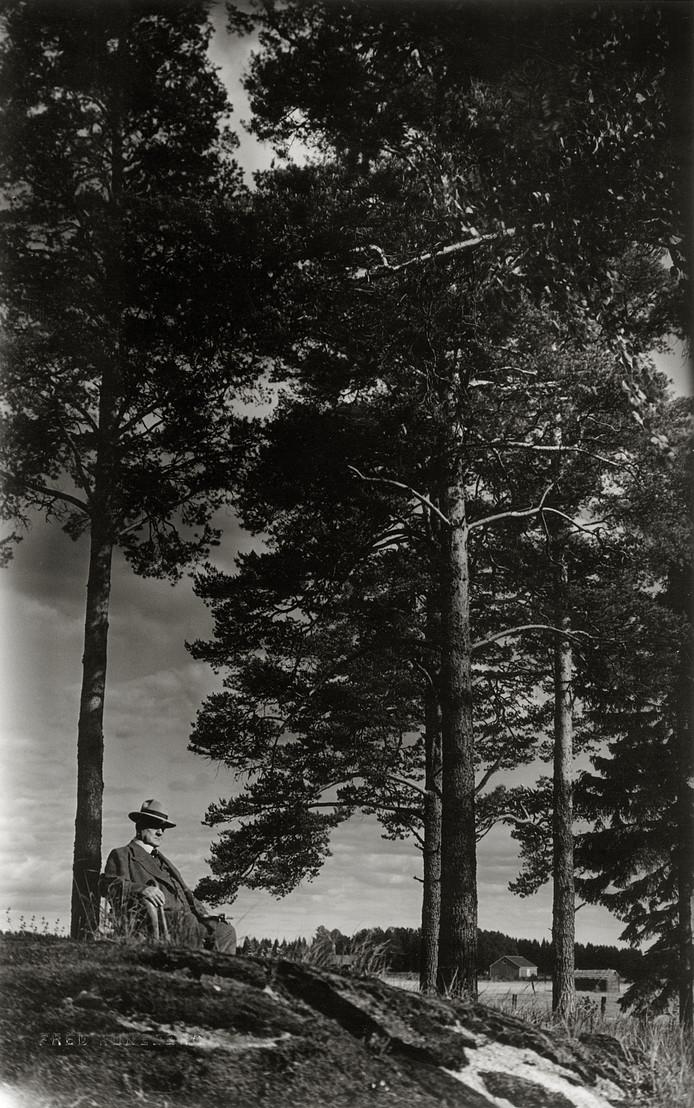 Componist Jean Sibelius. Zijn vioolconcert (in d-mineur) wordt 13 november uitgevoerd in Muziekgebouw Eindhoven.
