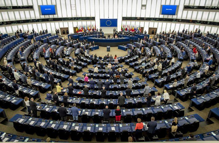 Europarlementariërs in de plenaire vergaderzaal van het Europees Parlement in het Franse Straatsburg, waar de stemming plaatsvond. Beeld ANP
