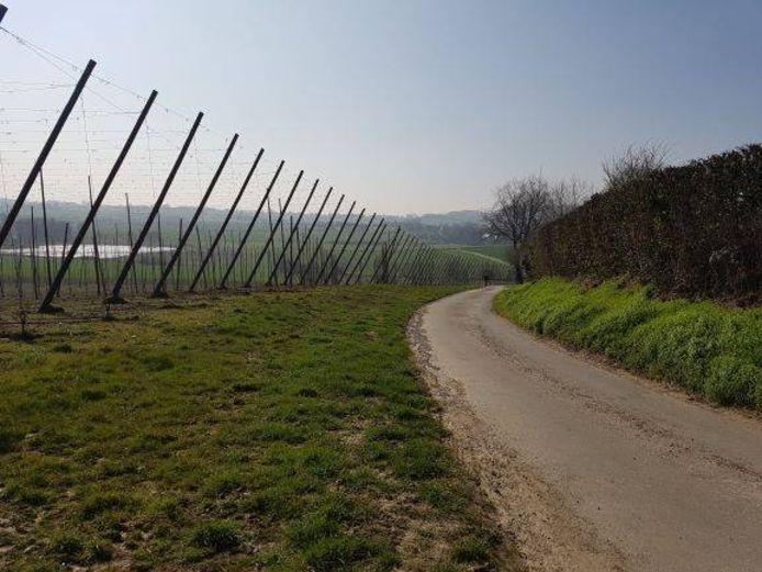 Het prachtige landschap, in het kader van hop, van Poperinge en 't Fransche (Frankrijk) kan je verkennen tijdens de fietstocht 'Hop naar 't Fransche en were'.