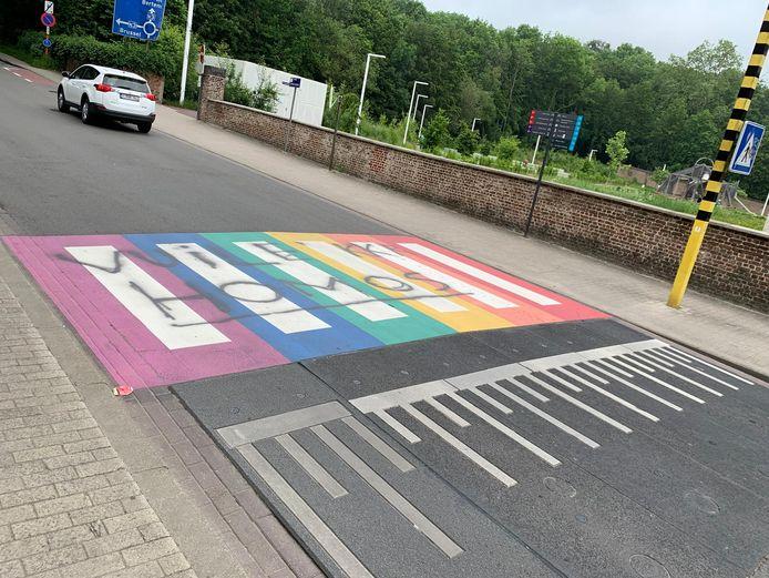 Het regenboogzebrapad werd in de nacht van zaterdag op zondag besmeurd met de verachtelijke boodschap.
