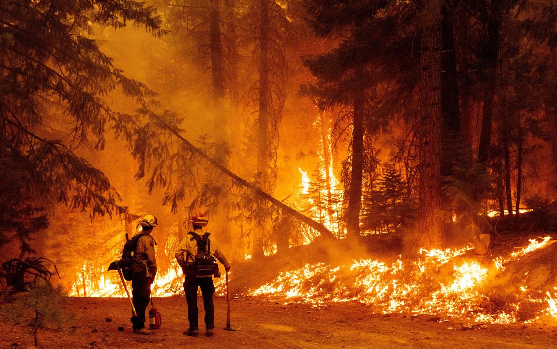 Twee brandweermannen staan machteloos tegen de oprukkende vuurzee in Plumas County, Californië. Beeld AFP