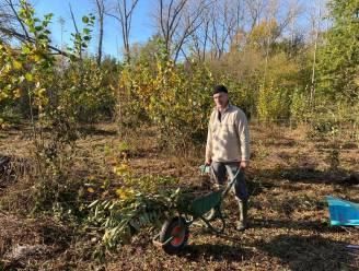 Natuurpunt plant nieuwe haagkant in Papegembos: 700 planten en struiken voor betere biodiversiteit