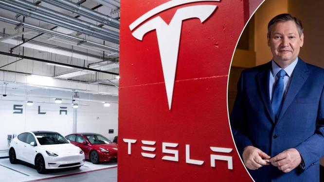 Wall Street-icoon Cathie Wood voorspelt gigantische stijging voor Tesla-aandeel tot 3.000 dollar: is dat realistisch? Paul D'Hoore geeft duiding