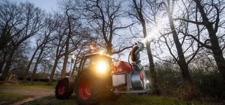 Bestrijding van jeukrups in Hengelo is voorbij: geen lawaai meer