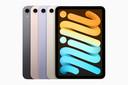 De nieuwe iPad Mini in de vier beschikbare kleurvarianten.