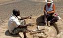 De opgravingen liggen in een gebied dat vroeger zeer vruchtbaar was