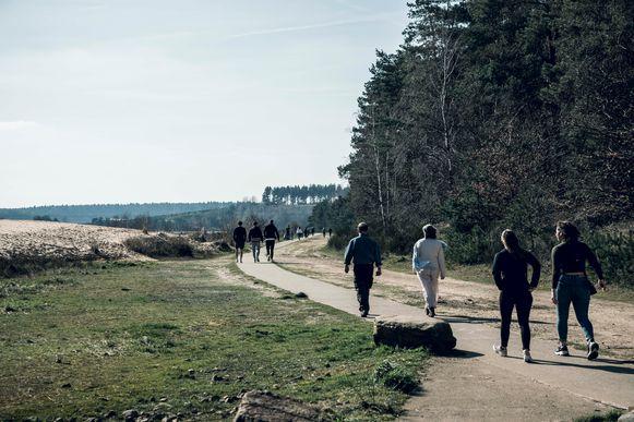 Wandelaars in de Maasmechelse Heide.