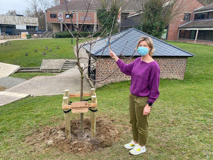 Burgemeester Inge Lenseclaes bij de 'tuttenboom' in Overijse.