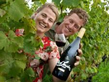 De beste rode wijn van Nederland en België komt uit... Erichem: 'Fruitiger wijn met een diepere onderlaag'