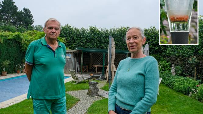 """""""Wat is die rode troep in onze tuin?"""": Machelaars vragen onderzoek naar mogelijke kerosineneerslag door druk vliegverkeer"""