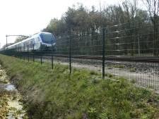 Hekken naast spoorlijn Boxtel-Haaren sluiten natuur af