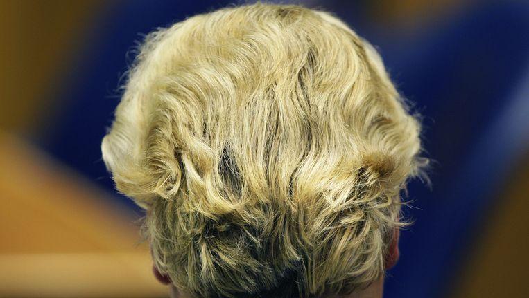 Geert Wilders in de Tweede Kamer tijdens het vragenuurtje. © ANP Beeld