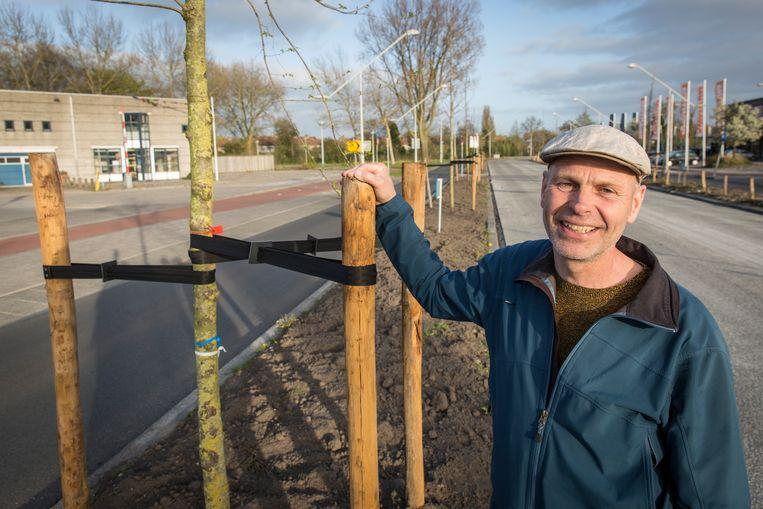De bomenconsulent van de gemeente hoopt enkele bomen te kunnen redden, bijvoorbeeld door ze tijdelijk te verplaatsen. Beeld Dingena Mol