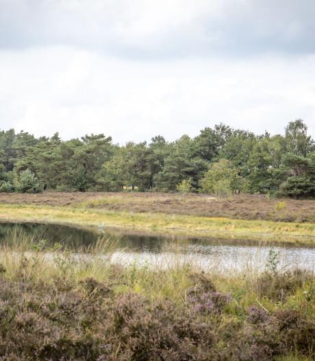 CDA: 'Schrap beschermde status natuurgebieden in Noordoost-Twente'