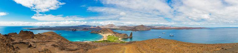 Elk eiland is een uniek experiment in geïsoleerde evolutie, en toch lijken ze op elkaar - Trouw