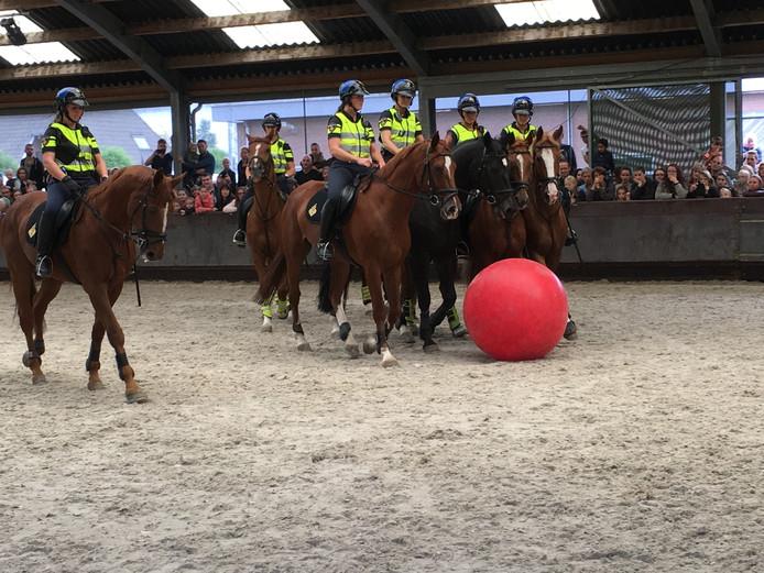 Bezoekers zien de politiepaarden aan het werk.