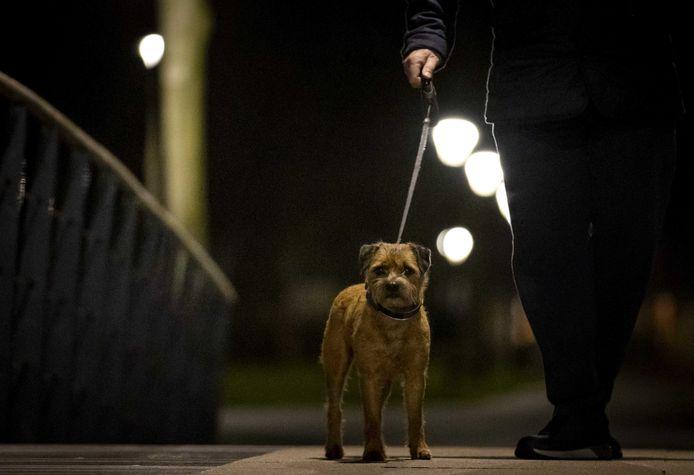 De hond uitlaten mag nog wel tijdens de avondklok.