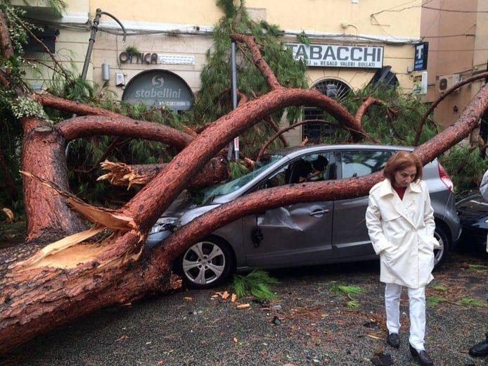 Een auto is total loss na een vallende boom in Terracina.