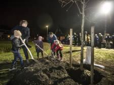 Walnotenboom als herinnering aan historische Samenloop voor Hoop in Tubbergen
