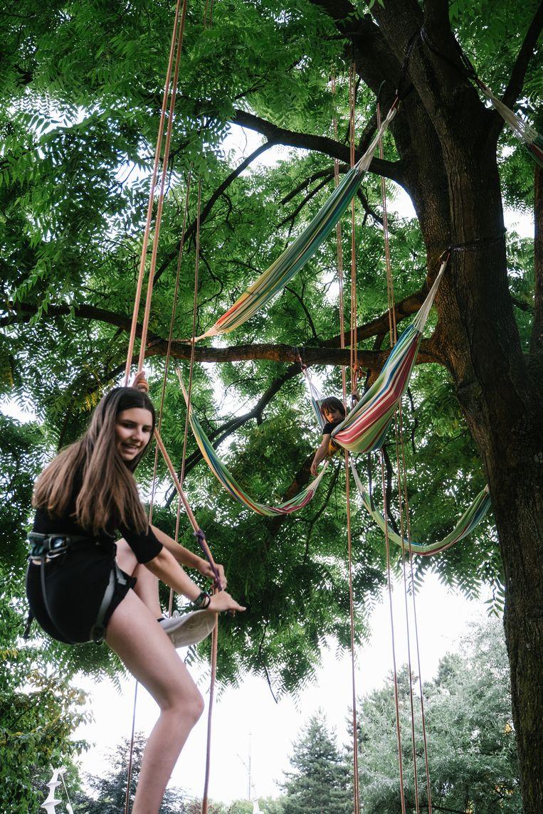 Op Couleur Café hangen de hangmatten hoog in de bomen. Beeld Wouter Van Vooren
