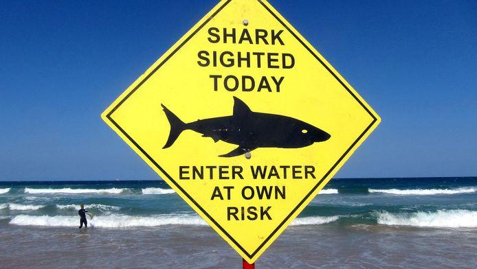 Een Amerikaanse tiener is zondag aan de dood ontsnapt toen hij tijdens het zwemmen gegrepen werd door een haai.